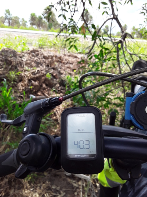 40degC under the tree during the afternoon. It was a wise decision to stop cycling, and rest for a few hours. Gran Chaco, Paraguay.
