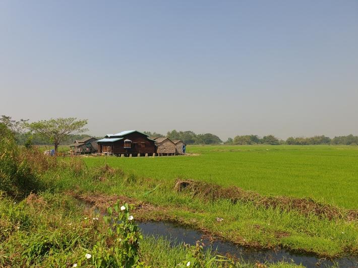 Irrawady delta, Near Maubin, Myanmar.